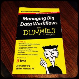 managing big data workflows for dummies